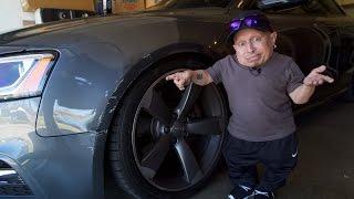 I Crashed My Car! | Verne Troyer