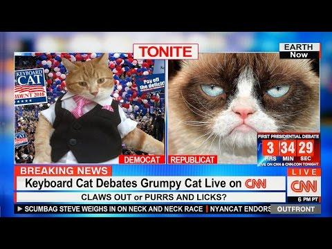 Keyboard Cat Debates Grumpy Cat On CNN!