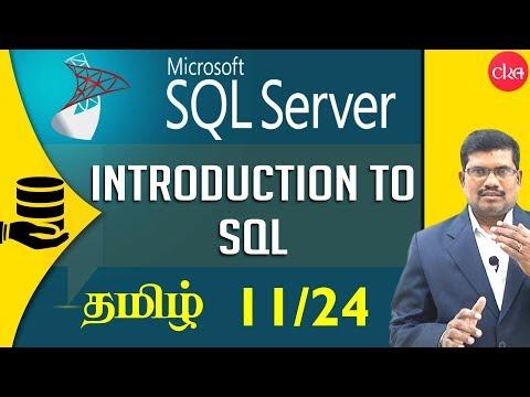 #11 Simple Select in SQL     Microsoft SQL Server in Tamil