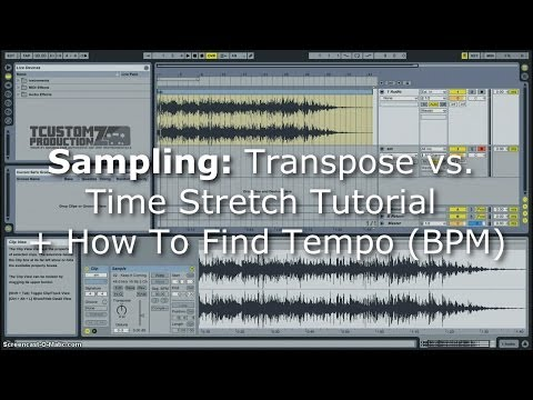 Sampling Tutorial: Transpose vs. Time Stretch + How To Find Tempo (BPM) | Ableton Live, Sample Beats