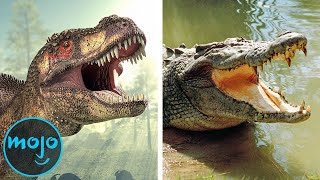 Download Top 10 Animals That Survived What Dinosaurs Couldn't Video