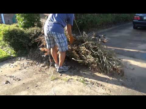 How to tie a bundle of tree branches