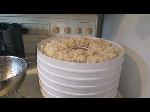 Peppering 1 Minute Brown Rice/Flour With a Dehydrator