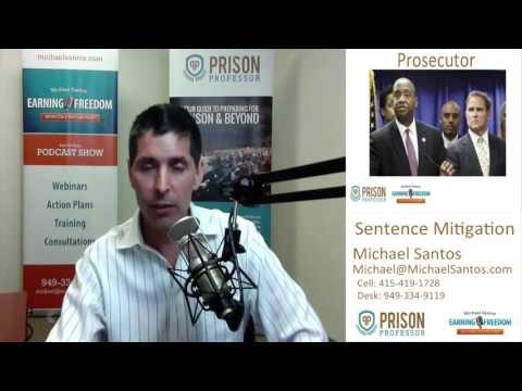 Federal Prison Sentencing Narratives