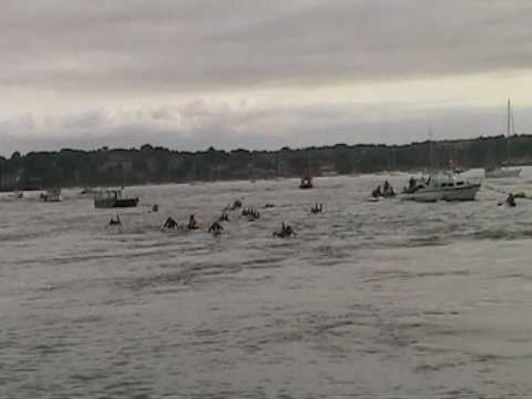 Brownsea Island Swim 2009