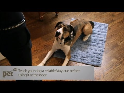 Teach Your Dog to Stay at the Door | Teacher's Pet With Victoria Stilwell