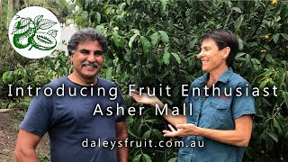 Introducing Asher Mall - a passionate fruit grower and collector.