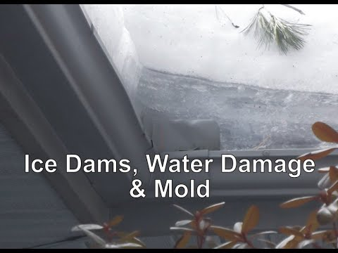Ice Dams, Water Damage & Mold by IndoorDoctor