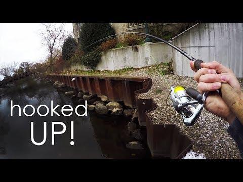 URBAN Steelhead Fishing... The Locals HATE Me...