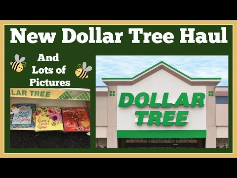New Dollar Tree Haul 🤑 and Lots of Pictures