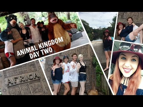 Animal Kingdom/Parks Close Early for Hurricane Matthew | October 2016