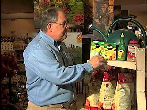 Fertilizing Indoor Plants