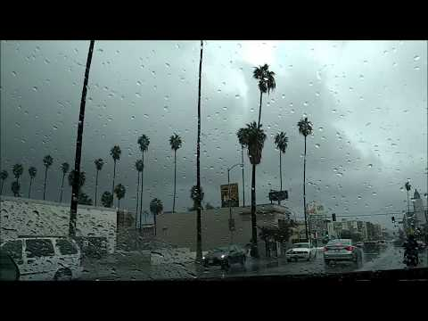 Hollywood Blvd. in the Rain