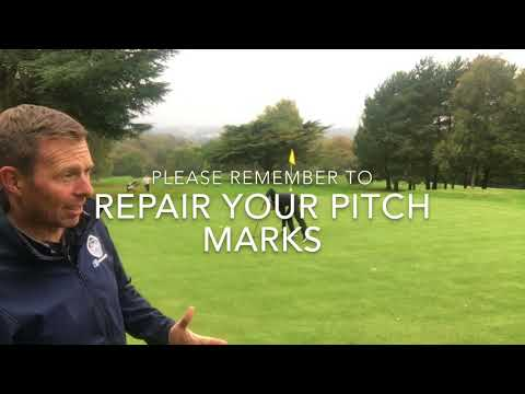 This weeks news from Halesowen Golf Club plus a quick tip to help your game