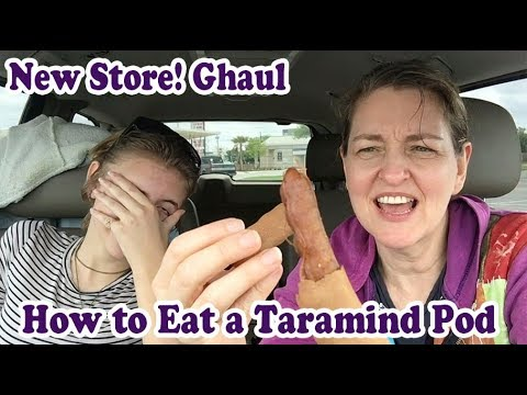 H Mart Grocery Shop with Haul Plus How to Eat a Dried Tamarind Pod