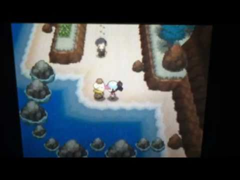 Pokemon black and white, how to get: strength, dive, and waterfall