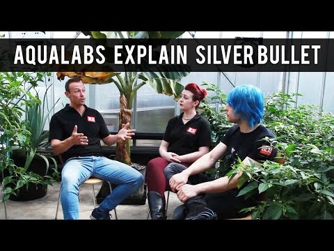 One Stop Road Trip: Aqualabs Explains Silver Bullet!