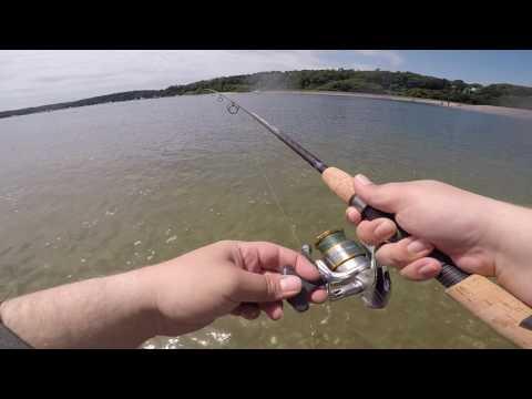 Catching Fluke (Flounder) in New York on Long Island from shore
