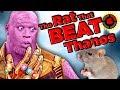 Film Theory The Rat That Beat Thanos Marvel Endgame