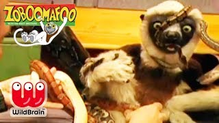 Zoboomafoo | Episode: Lemur Learns about Snakes | Animals For Kids