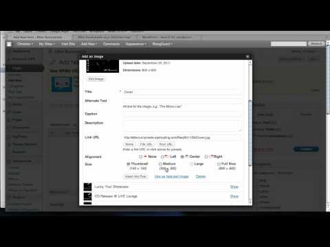 Add an iTunes Widget to your WordPress EPK