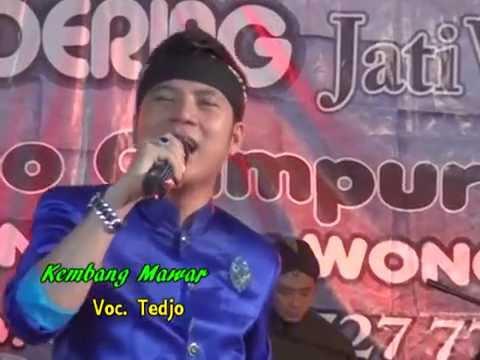 Lirik Lagu KEMBANG MAWAR Sragenan Karawitan Campursari - AnekaNews.net