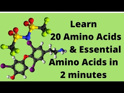 The 20 Amino Acids and Essential Amino Acids Mnemonic