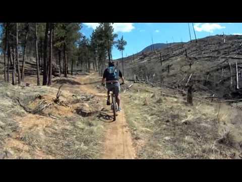 Guided Mountain Bike Tours | Boulder, Denver, Fort Collins, Colorado | Front Range Ride Guides