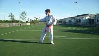 Fredrik tae kwon do poomse 3