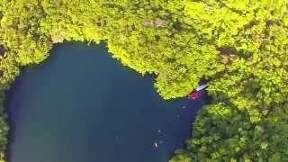 Jellyfish Lake Palau 2015