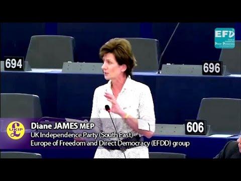 TTIP secrecy demonstrates EU's anti-democratic motives - Diane James MEP