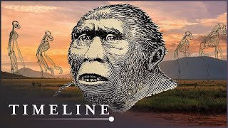 The First Human (Evolution Documentary) | Timeline