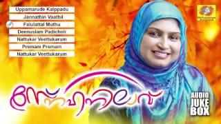 സ്നേഹനിലാവ് | Sneehanilaavu | Latest Romantic Mappila Album | Malayalam Mappila Songs