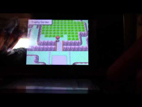 How to catch porygon, castform, chansey, ect. in pokemon Diamond/Pearl