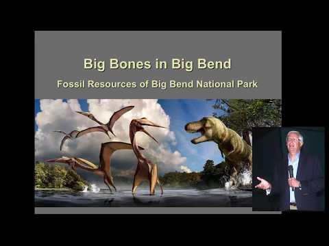 Don Corrick- Big Bones in Big Bend
