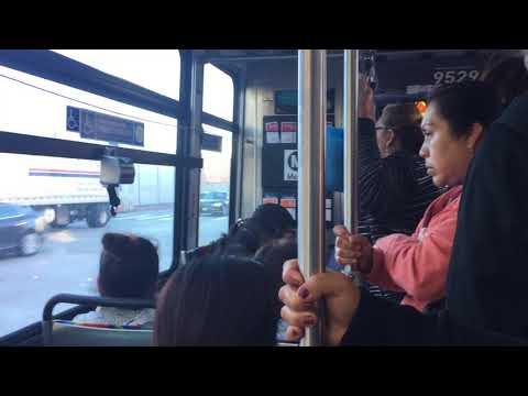 Crowded Metro Bus in Los Angeles during Rush Hour ( भीड़ ट्रेन) (قطار مزدحم)