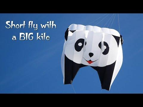 Short fly with one BIG kite (Panda flies again)
