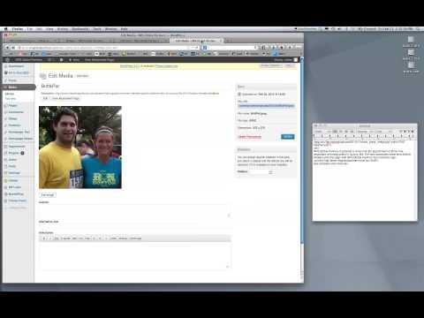 Making Changes to a Wordpress Text Widget