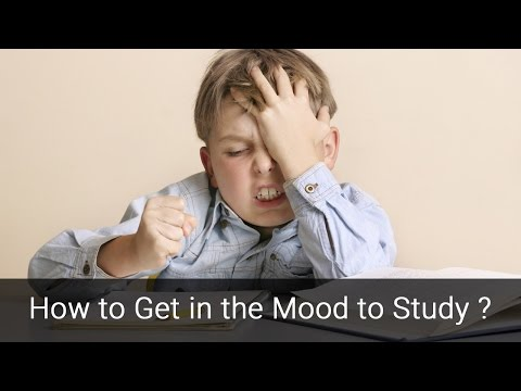 How to Get in the Mood to Study?