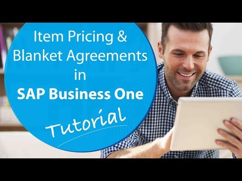 Mastering Item Pricing & Blanket Agreements in SAP Business One