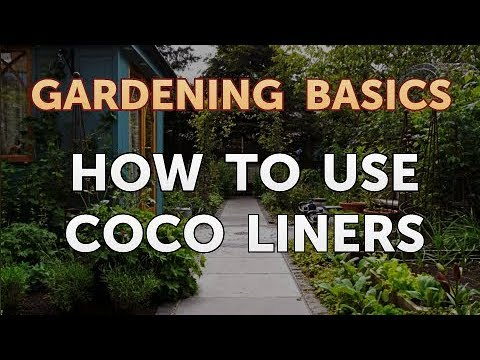How to Use Coco Liners