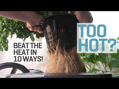 Too Hot in your Grow Room?