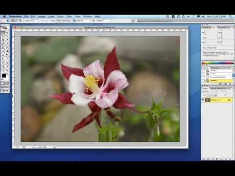 How to Resize Images for Printing in Photoshop or Photoshop Elements