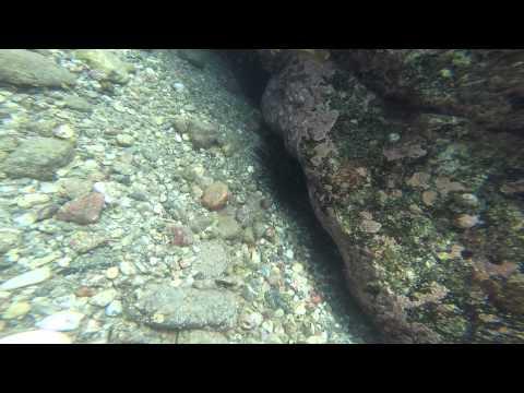 Two Harbors Hookah Diving Video 2