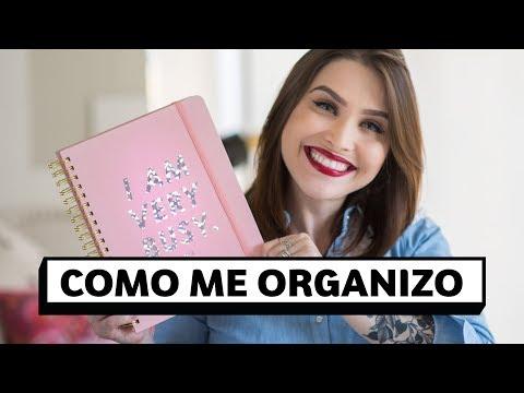 Como organizo o meu dia a dia: planner, agenda online e planilhas | Lu Ferreira