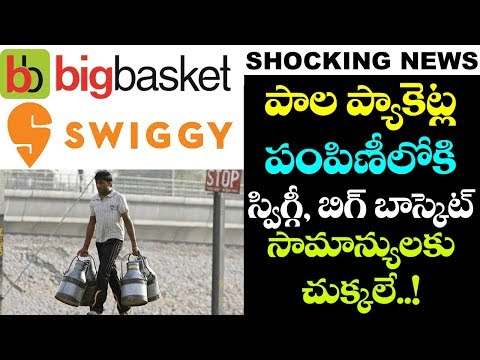 WHAT! Swiggy and Big Basket to Deliver Milk Packets? | Latest News and Updates | VTube Telugu