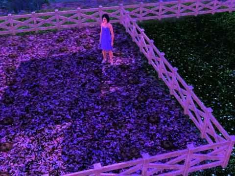 Starting own garden sims3