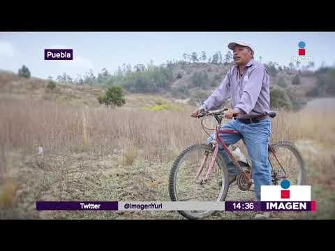 Xxx Mp4 Campesino Gana Carrera En Puebla Y Deja Atrás A Todos Noticias Con Yuriria Sierra 3gp Sex