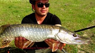 Şamandırayla Turna Avı Float Fishing For Pike 3.Bölüm shchuka 파이크 사냥