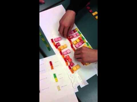 DNA replication modeling